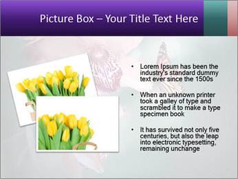 0000074460 PowerPoint Template - Slide 20