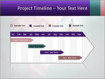 0000074460 PowerPoint Template - Slide 25