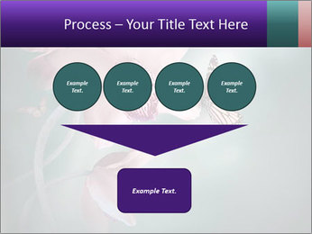 0000074460 PowerPoint Template - Slide 93