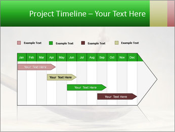 0000074463 PowerPoint Template - Slide 25