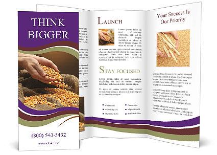 0000074485 Brochure Template