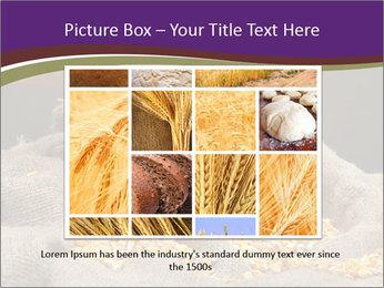 0000074485 PowerPoint Template - Slide 15