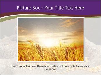 0000074485 PowerPoint Template - Slide 16