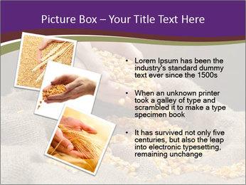 0000074485 PowerPoint Template - Slide 17