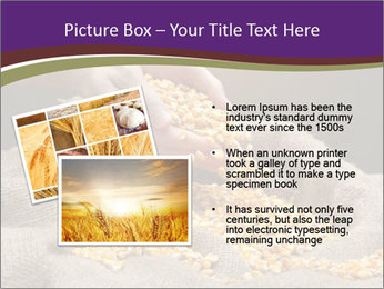 0000074485 PowerPoint Templates - Slide 20