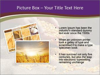 0000074485 PowerPoint Template - Slide 20