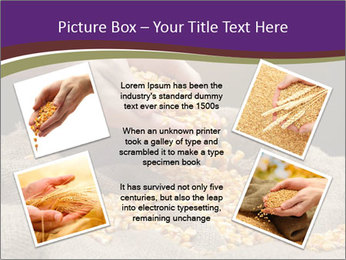 0000074485 PowerPoint Template - Slide 24
