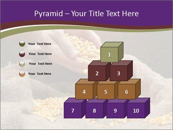 0000074485 PowerPoint Template - Slide 31