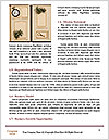 0000074495 Word Templates - Page 4