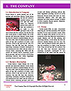 0000074509 Word Template - Page 3