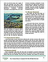 0000074515 Word Templates - Page 4
