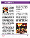 0000074516 Word Template - Page 3