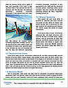 0000074520 Word Template - Page 4