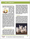 0000074524 Word Template - Page 3