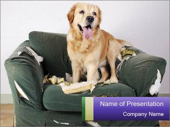0000074527 PowerPoint Template - Slide 1