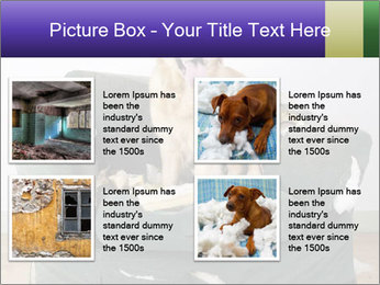 0000074527 PowerPoint Template - Slide 14