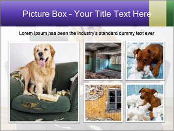 0000074527 PowerPoint Template - Slide 19