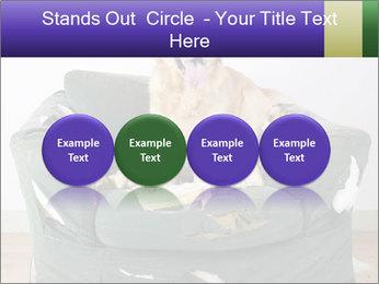 0000074527 PowerPoint Template - Slide 76