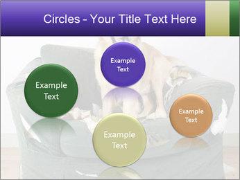0000074527 PowerPoint Template - Slide 77