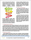 0000074532 Word Templates - Page 4