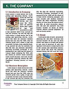 0000074534 Word Template - Page 3