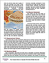 0000074534 Word Template - Page 4