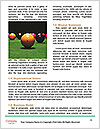 0000074540 Word Template - Page 4