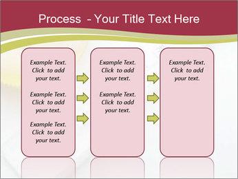 0000074553 PowerPoint Template - Slide 86