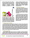 0000074556 Word Template - Page 4