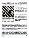 0000074558 Word Template - Page 4