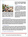 0000074560 Word Template - Page 4