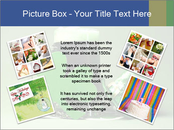 0000074565 PowerPoint Templates - Slide 24