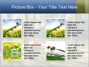 0000074566 PowerPoint Templates - Slide 14