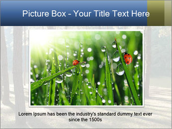 0000074566 PowerPoint Templates - Slide 15