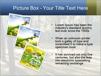 0000074566 PowerPoint Templates - Slide 17