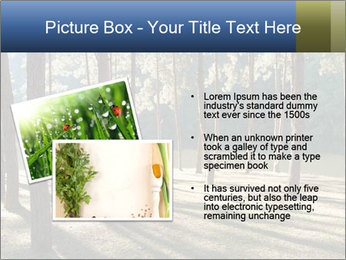 0000074566 PowerPoint Templates - Slide 20