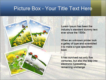 0000074566 PowerPoint Templates - Slide 23