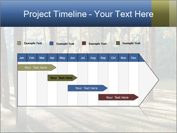 0000074566 PowerPoint Templates - Slide 25