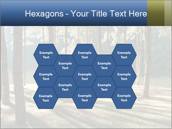 0000074566 PowerPoint Templates - Slide 44