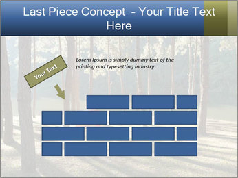 0000074566 PowerPoint Templates - Slide 46
