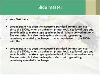 0000074568 PowerPoint Templates - Slide 2