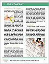 0000074568 Word Template - Page 3