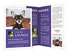 0000074569 Brochure Templates