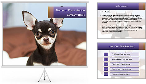 0000074569 PowerPoint Template