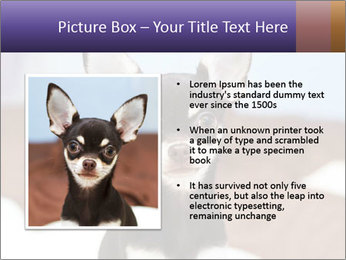 0000074569 PowerPoint Template - Slide 13