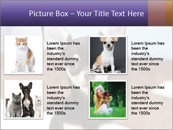 0000074569 PowerPoint Template - Slide 14