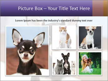 0000074569 PowerPoint Template - Slide 19