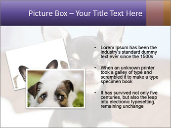 0000074569 PowerPoint Template - Slide 20