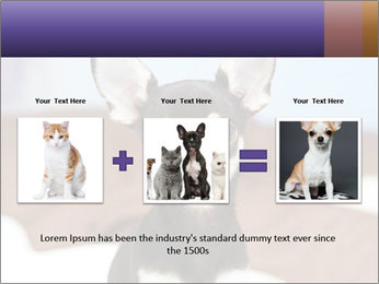 0000074569 PowerPoint Template - Slide 22