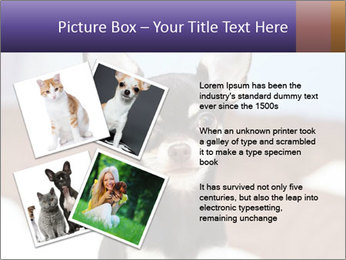0000074569 PowerPoint Template - Slide 23